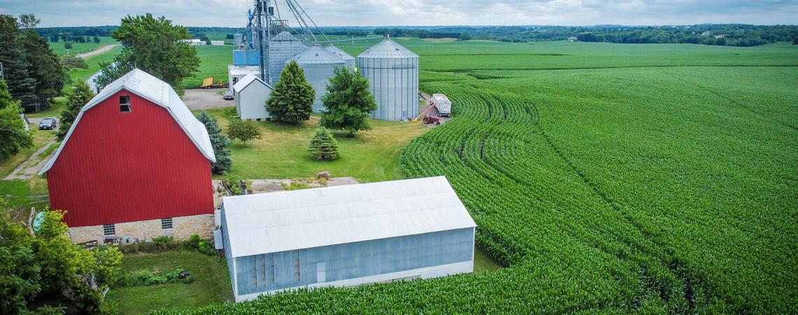 Aerial view of red barn and metal grain bins standing next to green corn field.